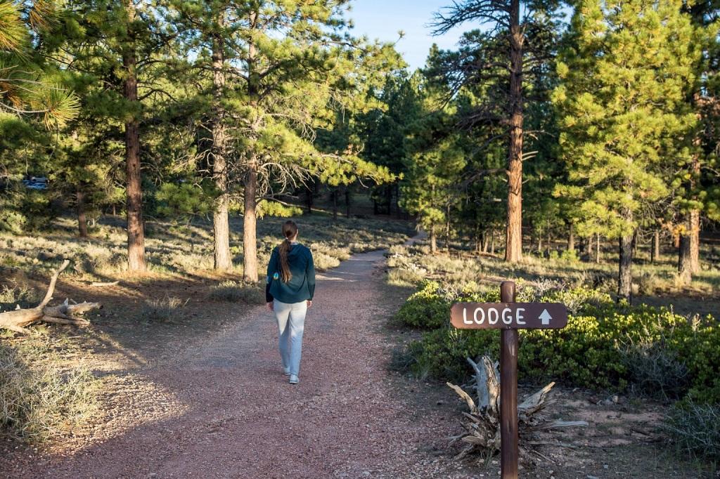 The Lodge at Bryce Canyon - widok