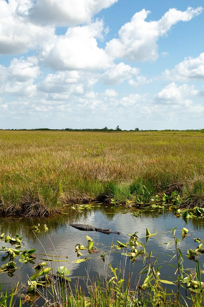 National Everglades Park