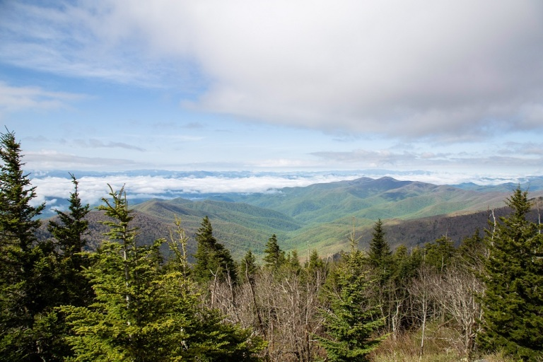 Clingmans Dome - widok
