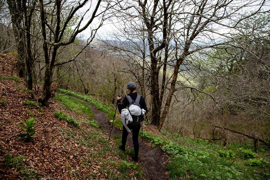 Appalachian Trail - widok