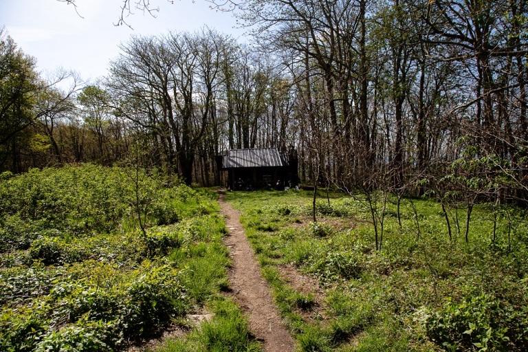 Appalachian Trail - shelter
