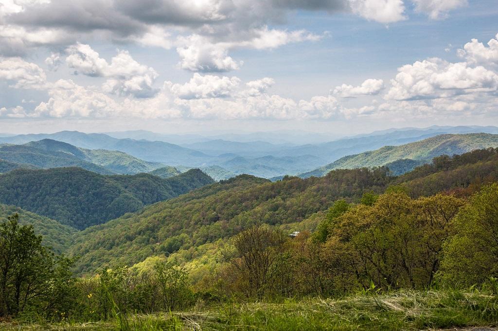 Blue Ridge Parkway - odcienie zieleni