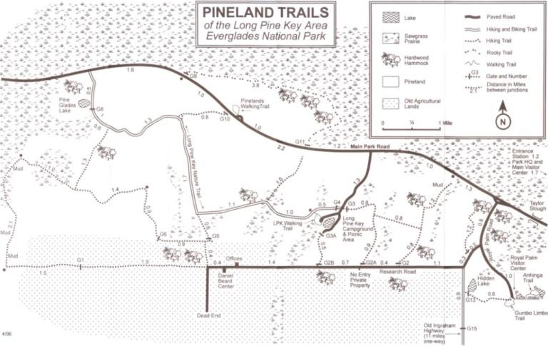 Pineland - mapa parku