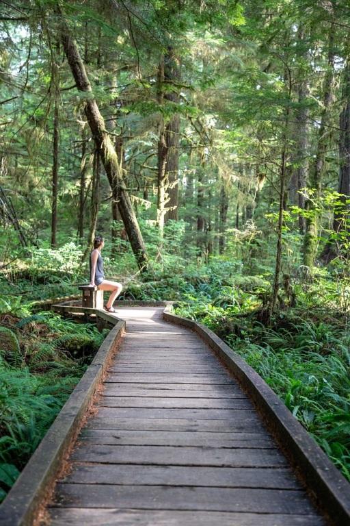 Rain Forest Nature Trail