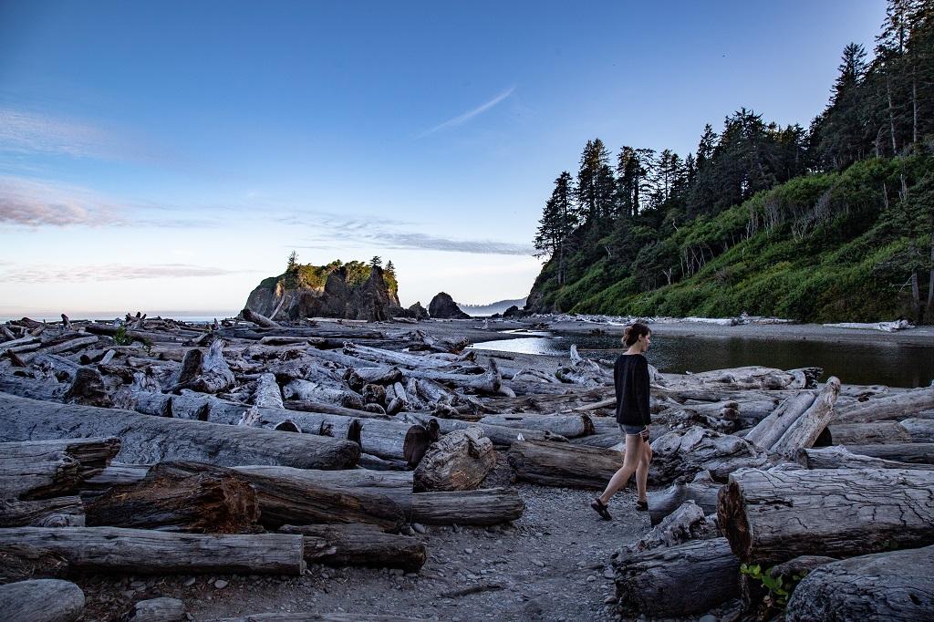 Ruby Beach - kłody drewna