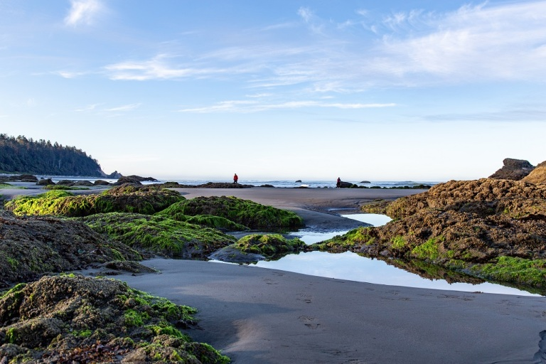 Ruby Beach - tide pools