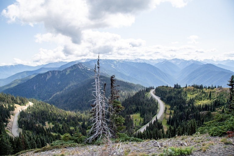 Hurricane Ridge - droga