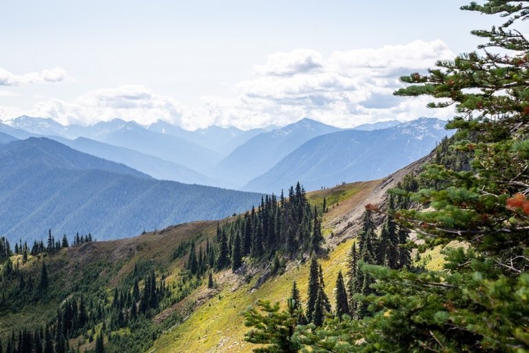 Hurricane Ridge - szczyty