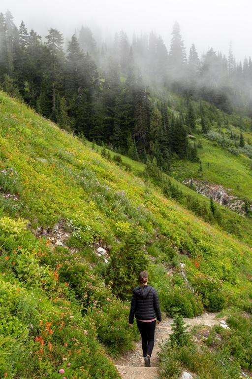 Skyline Trail - ścieżka