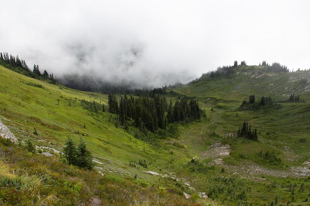 Skyline Trail - dolina