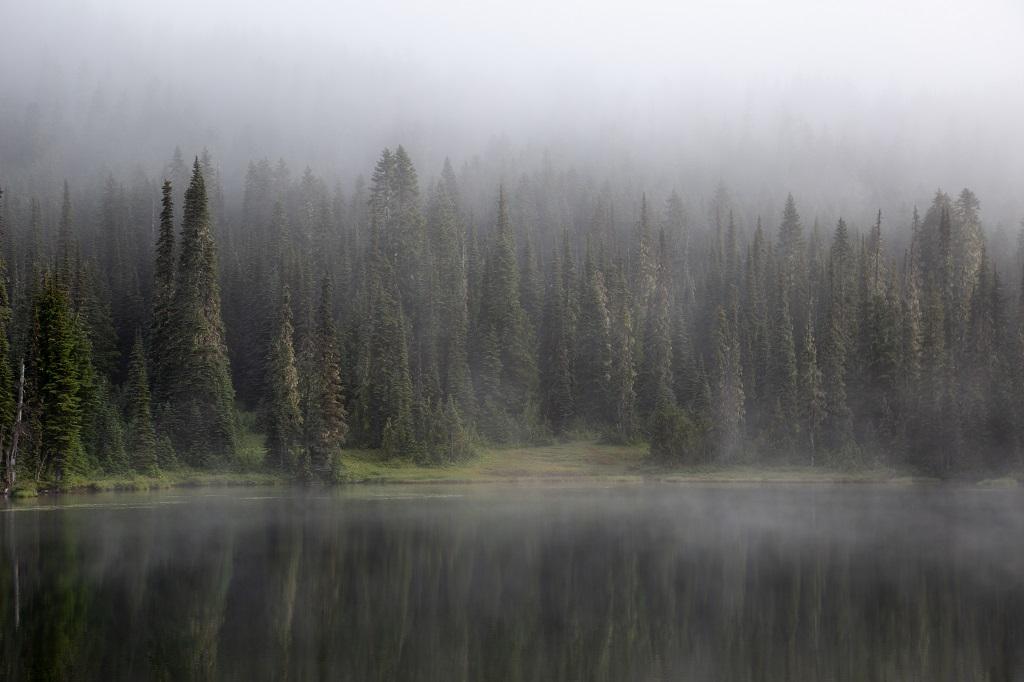 Reflection Lake - zbliżenie